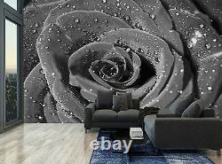 Floral Black Rose Water Drops Flower Photo Wallpaper Wall Mural GIANT WALL DECOR