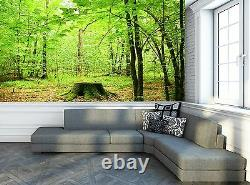 Forest In Summer Wall Mural Photo Wallpaper GIANT WALL DECOR Paper Poster