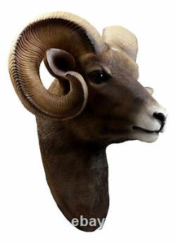 Rocky Mountains Bighorn Ram Trophy Taxidermy Wall Decor Sculpture Hanging Plaque