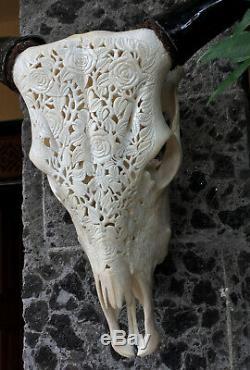 Roses Carved COW Horns BULL skull carved SKULL pretty wall mounted skull Decor