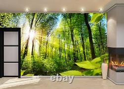 Sunlight, Forest Wall Mural Photo Wallpaper GIANT DECOR Paper Poster Free Paste