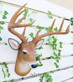 12 Point Buck Trophy Taxidermy Wall Decor Deer Head With Antlers Sculpture Plaque