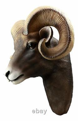 Montagnes Rocheuses Bighorn Ram Trophy Taxidermy Wall Decor Sculpture Hanging Plaque
