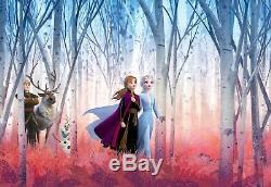 Mur Photo Murale Papier Peint Elsa Frozen Disney Enfants Décoration Pépinière Beedrom
